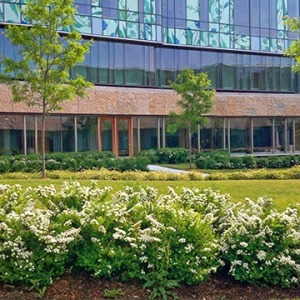 East side of the pharmacy building showing flower garden